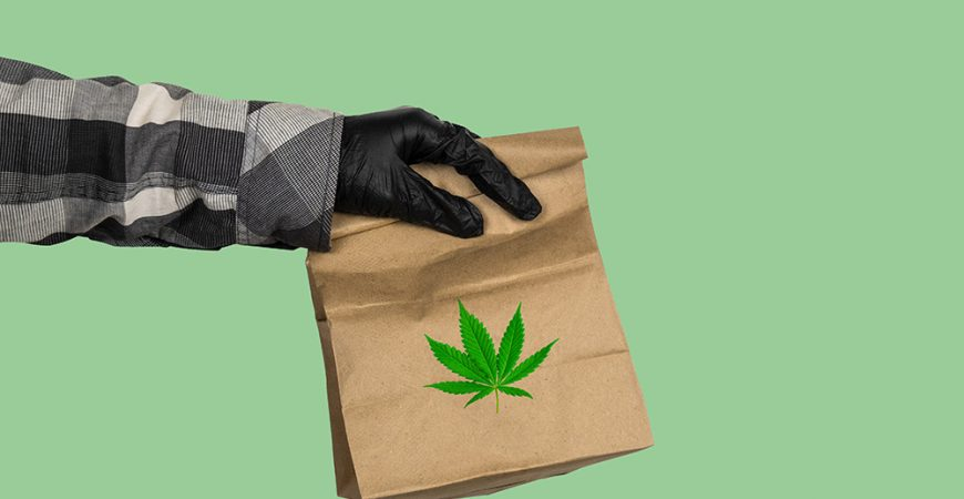 weed delivery guelph weed bag on green background